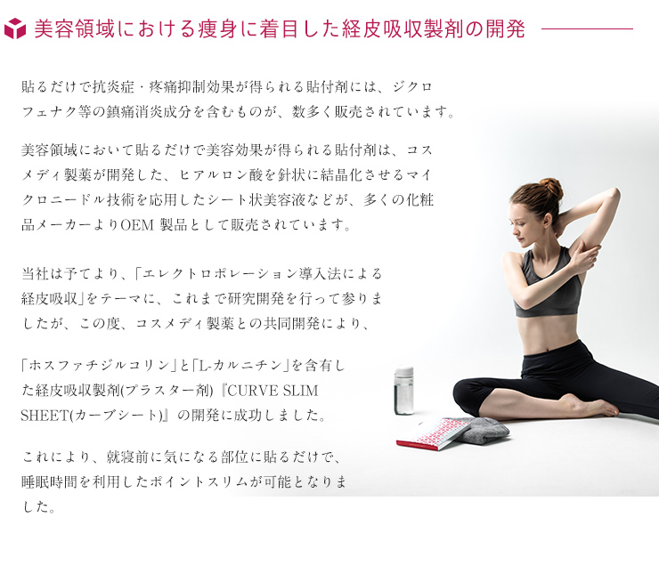 美容領域における痩身に着目した経皮吸収製剤の開発